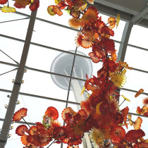 Chihuly Garden and Glass and Space Needle
